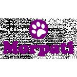 Morpati Veteriner Kliniği