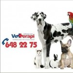 Vetterapi Veteriner Kliniği