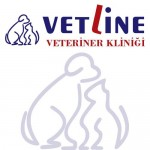 Vetline Veteriner Kliniği