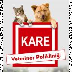 Kare Veteriner Kliniği