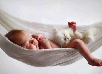 Kediyi Bebeğe Alıştırmak