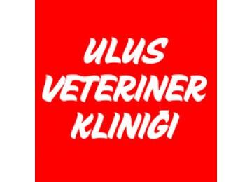 Ulus Veteriner Kliniği