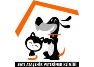 Batı Ataşehir Veteriner Kliniği