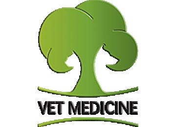 Vet Medicine Veteriner Tanı Ve Tedavi Merkezi
