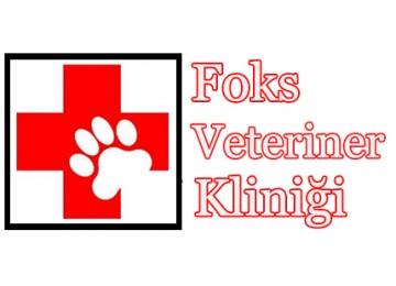 Foks Veteriner Kliniği
