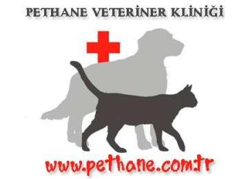 Pethane Veteriner Kliniği
