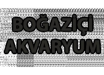 Boğaziçi Akvaryum