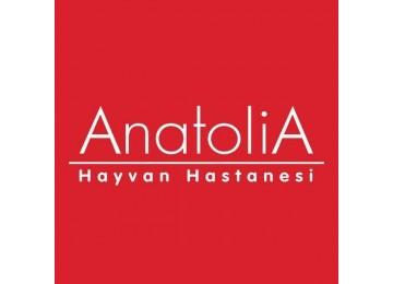 Anatolia Hayvan Hastanesi