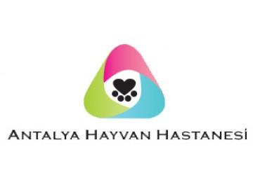 Antalya Hayvan Hastanesi