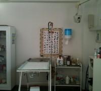 20097-jasmin-veteriner-klinigi-765