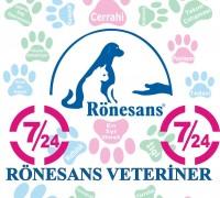 20291-ronesans-veteriner-klinigi-655