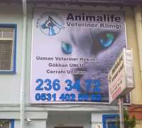 animal-life-veteriner-klinigi-776