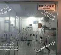 dost-pati-veteriner-klinigi-703