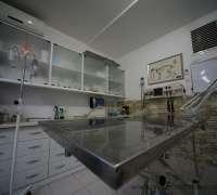 kavaklidere-veteriner-klinigi-899