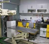 kuki-veteriner-klinigi-816