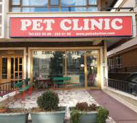 pet-clinic-veteriner-382