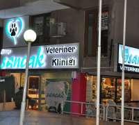sancak-veteriner-klinigi-62