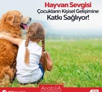 20480-anatolia-hayvan-hastanesi-713