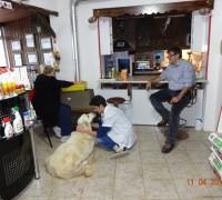 20486-akdeniz-veteriner-klinigi-509