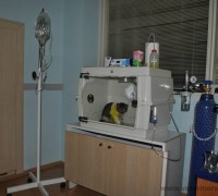20562-sekerci-veteriner-klinigi-590