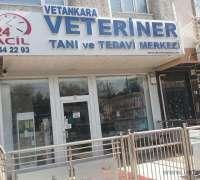 vetankara-veteriner-tani-ve-tedavi-merkezi-381