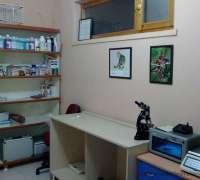 yenimahalle-veteriner-klinigi-421