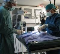 20587-istanbul-veteriner-klinigi-216