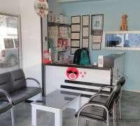 demirtas-veteriner-klinigi-186
