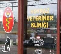 hoyraz-veteriner-klinigi-856