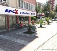20662-apex-veteriner-klinigi-461