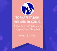 20689-topkapi-yasam-veteriner-klinigi-895