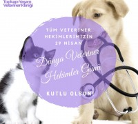 20697-topkapi-yasam-veteriner-klinigi-509