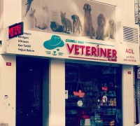 20710-cizmeli-kedi-veteriner-klinigi-495