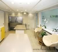 20714-juen-veteriner-klinigi-674