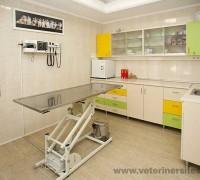 20717-juen-veteriner-klinigi-879