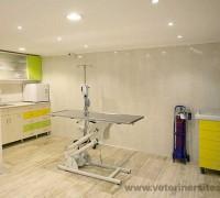 20722-juen-veteriner-klinigi-797