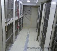 20732-yenibosna-veteriner-klinigi-226