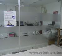 20736-yenibosna-veteriner-klinigi-694