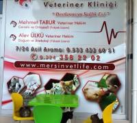 20746-mersin-vetlife-veteriner-klinigi-116