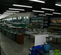 20810-lale-akvaryum-market-253