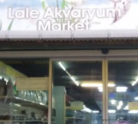 Lale Akvaryum Market