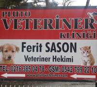 Pluto Veteriner Kliniği