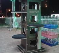 20950-zooland-pet-shop-422
