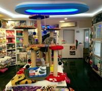 20962-zooland-pet-shop-160