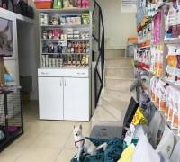20970-vet-ra-veteriner-klinigi-865