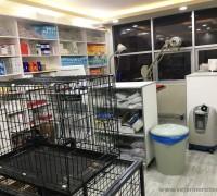 20974-vet-ra-veteriner-klinigi-446