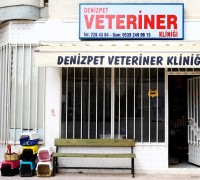 21044-deniz-pet-veteriner-klinigi-194
