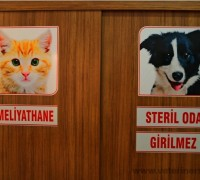 21050-deniz-pet-veteriner-klinigi-263