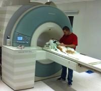 21066-umitkoy-veteriner-klinigi-95