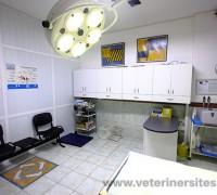 21074-petmania-veteriner-klinigi-591